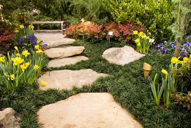 Creating Impressive Landscaping in Plano, TX for Better Business