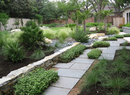Landscaping in Plano, TX as Solution to Liven Up Concrete Walls
