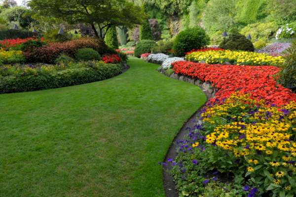 Hire Professionals for Lawncare to Enhance the Look
