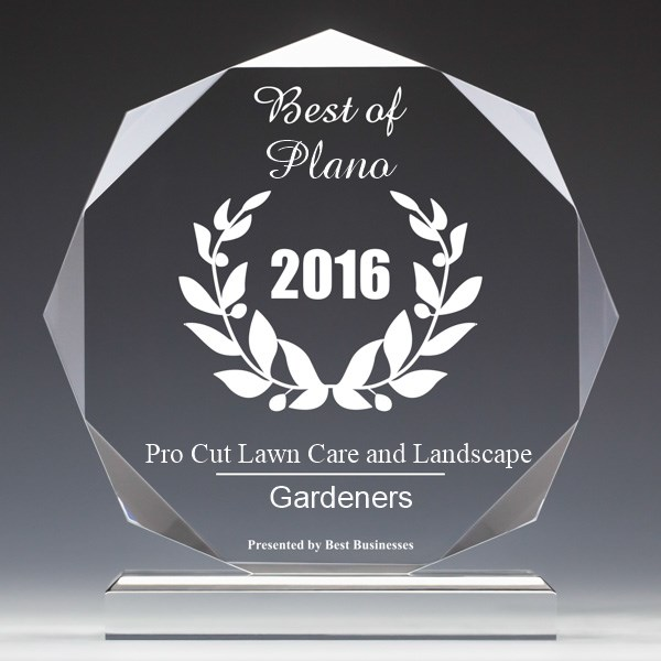 Pro Cut Lawn Care and Landscape Receives 2016 Best Businesses of Plano Award Plano